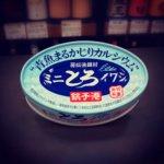 ミニとろイワシ缶①